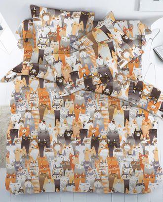 Котики (Бязь 150 см) арт. БД-579-1-1134.032