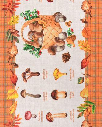 Царство грибов (Полотно вафельное 50 см) арт. ПВ50-171-1-0989.080