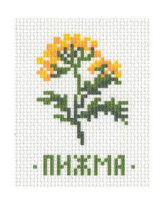 """Канва """"Травы: пижма"""" арт. ТРК-4-1-16460.004"""