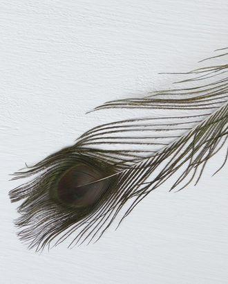 Перо павлина для декора 80см арт. ДТВП-1-1-35470