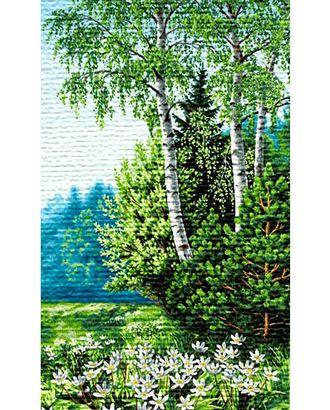 Цветы на опушке (купон гобеленовый) арт. КГ-23-1-1614.015