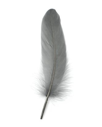 Перо голубя дл.15 см арт. ППР-8-22-33646.024