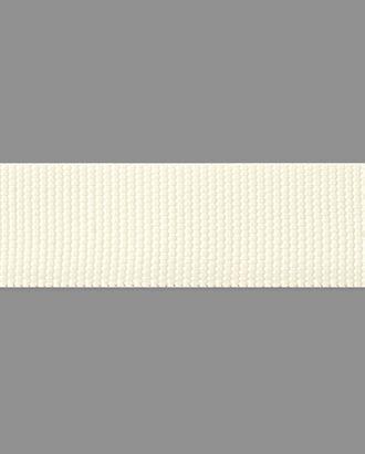 Стропа ш.2,5 см арт. СТ-150-1-34458.001