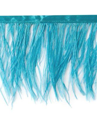 Кант страус ш.11 см арт. БОА-16-6-9966.007