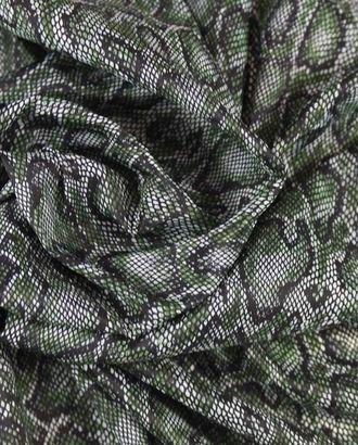 Ткань плащевая, принт под питона в зеленых тонах арт. ГТ-1136-1-ГТ0028431