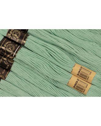 Нитки мулине цв.3902 св.зеленый 12х10м С-Пб арт. МГ-16797-1-МГ0163903