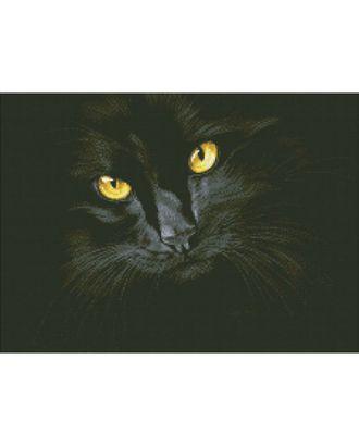 """Набор """"Паутинка"""" для изготовления к со стразами Черная кошка 38х52см арт. МГ-770-1-МГ0171453"""