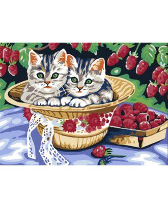 К по номерам Белоснежка Котята в саду 30х40 см арт. МГ-35238-1-МГ0258742
