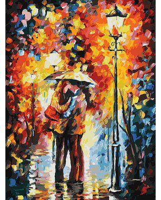 Живопись на к Белоснежка Поцелуй под дождем 30х40 см арт. МГ-35625-1-МГ0260604
