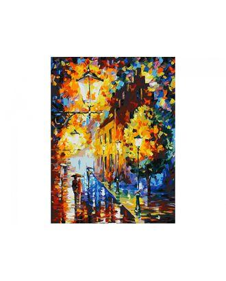 Живопись на к Белоснежка Огни в ночи 30х40 см арт. МГ-35629-1-МГ0260609