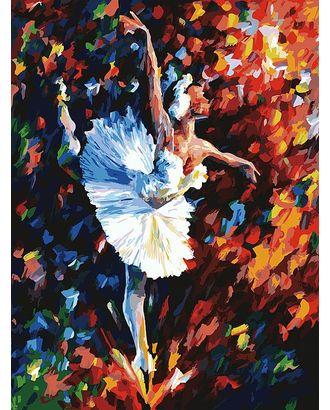 Живопись на к Белоснежка Танец души 30х40 см арт. МГ-35631-1-МГ0260611