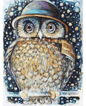 Живопись на к Белоснежка Сова в шляпе 30х40 см арт. МГ-35635-1-МГ0260615