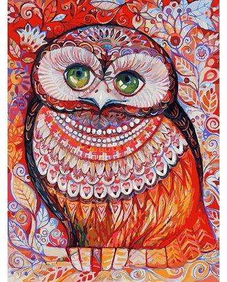 Живопись на к Белоснежка Медовая сова 30х40 см арт. МГ-35636-1-МГ0260616