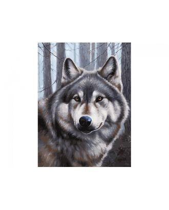 К по номерам Белоснежка Волк 30х40 см арт. МГ-36188-1-МГ0266475