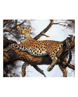 К по номерам Белоснежка Леопард на отдыхе 40х50 см арт. МГ-36255-1-МГ0267445