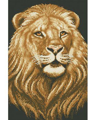 """Набор """"Паутинка"""" для изготовления к со стразами Царь зверей 30х45 см арт. МГ-6018-1-МГ0371124"""