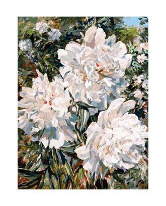 К по номерам Белоснежка Пионы в саду 30х40 см арт. МГ-42059-1-МГ0492428