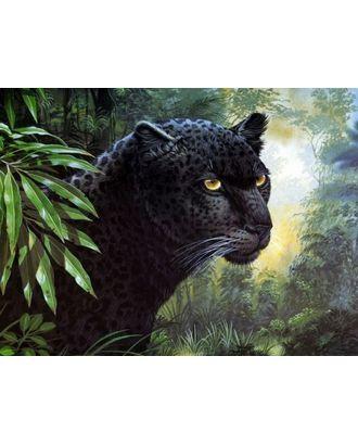 """Набор """"Колор Кит"""" к по номерам Черная пантера 30х40 см арт. МГ-52549-1-МГ0634814"""