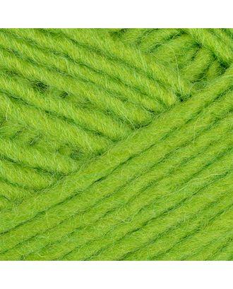 """Пряжа для вязания ТРО """"Азалия"""" (40% шерсть, 60% акрил) 10х100г/270м цв.1552 аспарагус арт. МГ-52632-1-МГ0635106"""