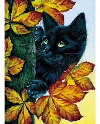 Алмазная вышивка Черный кот LZE043 30х40 тм Цветной арт. МГ-9055-1-МГ0638000