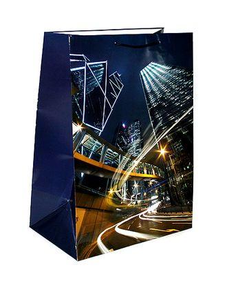 Сумка бум. 26-555 супер вертик. глянц.- огни большого города (40х55х24см) арт. МГ-57125-1-МГ0664886