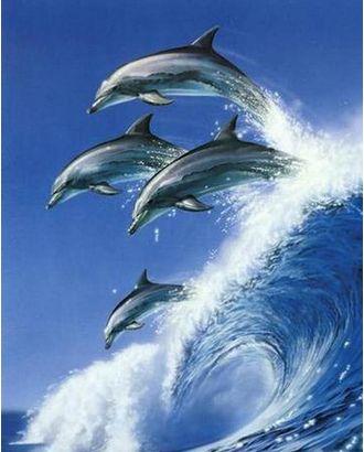 Алмазная мозаика Ah08001 Дельфины на волне 40х50 арт. МГ-10113-1-МГ0671517
