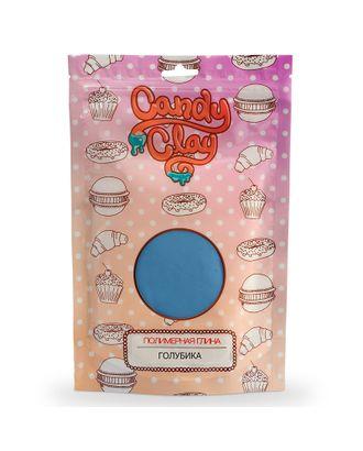 FL.01-0208 FLEUR Candy Clay Полимерная кондитерская глина, голубика 100г арт. МГ-65197-1-МГ0724921