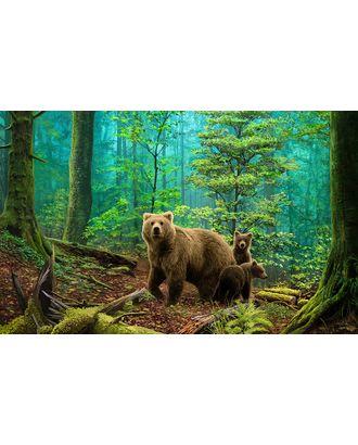 Алмазная мозаика Ah5331 Медведи в лесу 50х80 арт. МГ-14020-1-МГ0748477