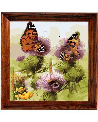 """Набор """"Колор Кит"""" картина по номерам Бабочки и шмели 30х30 арт. МГ-83565-1-МГ0767418"""