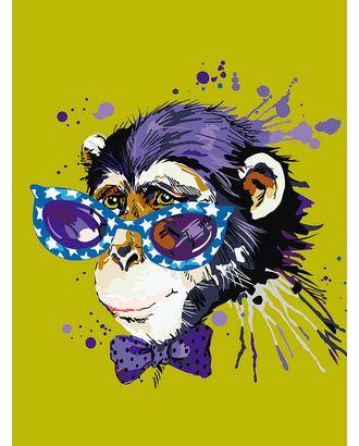 Картины по номерам Disсo Monkey ME1119 30х40 тм Цветной арт. МГ-90317-1-МГ0783202