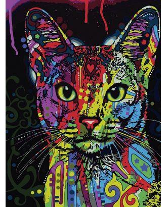 Картины по номерам Кошка поп- 30х40 тм Цветной арт. МГ-95055-1-МГ0853469