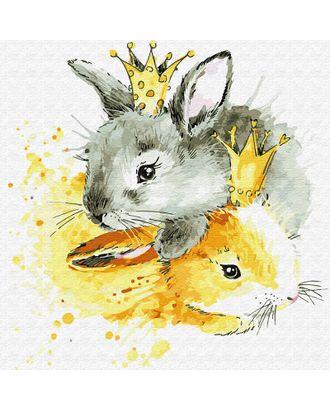 Картины по номерам Molly Королевские зайцы (19 цветов) 30х30 см арт. МГ-95254-1-МГ0859764