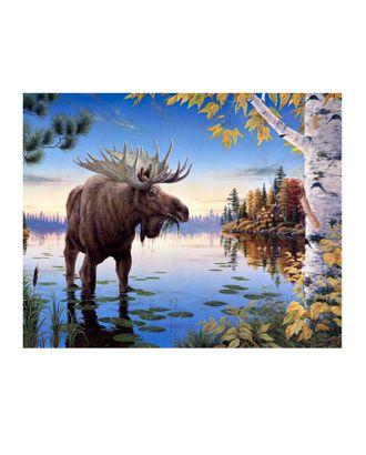 Картина по номерам с цветной схемой на холсте Molly Сохатый (20 цветов) 30х40 см арт. МГ-96308-1-МГ0859779