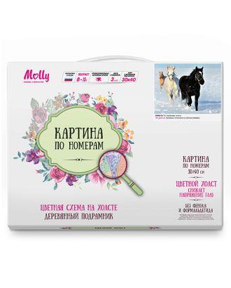 Картина по номерам с цветной схемой на холсте Molly По первому снегу (18 цветов) 30х40 см арт. МГ-96404-1-МГ0859784
