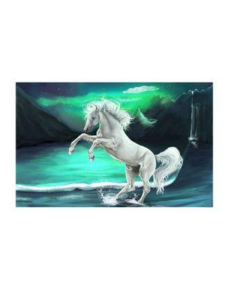 Картина по номерам с цветной схемой на холсте Molly Фэнтези (18 цветов) 30х40 см арт. МГ-96406-1-МГ0859786