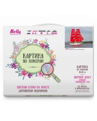 Картина по номерам с цветной схемой на холсте Molly Бриг Россия (20 цветов) 30х40 см арт. МГ-96326-1-МГ0859793