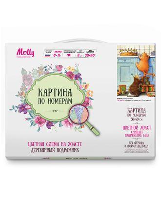 Картина по номерам с цветной схемой на холсте Molly Сладкоежки (18 цветов) 30х40 см арт. МГ-96337-1-МГ0859797