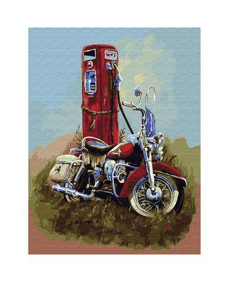Картина по номерам с цветной схемой на холсте Molly Харлей Дэвидсон (20 цветов) 30х40 см арт. МГ-95198-1-МГ0859804