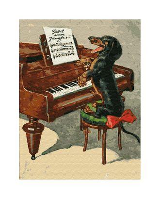 Картина по номерам с цветной схемой на холсте Molly Собачий вальс (20 цветов) 30х40 см арт. МГ-95297-1-МГ0859805