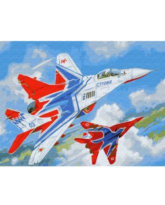 Картина по номерам с цветной схемой на холсте Molly Стрижи (18 цветов) 30х40 см арт. МГ-95103-1-МГ0859814