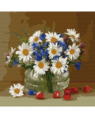Картины по номерам Molly Бузин. Ромашки и васильки (23 цвета) 30х30 см арт. МГ-95309-1-МГ0860084
