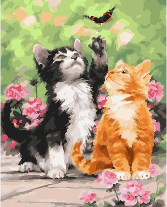 """Набор """"Колор Кит"""" картина по номерам Котята 40х50 арт. МГ-96537-1-МГ0867636"""