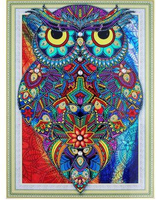 """Набор """"Колор Кит"""" картина алмазная с фигурными стразами Рубиновая сова 30х40 арт. МГ-97585-1-МГ0867667"""