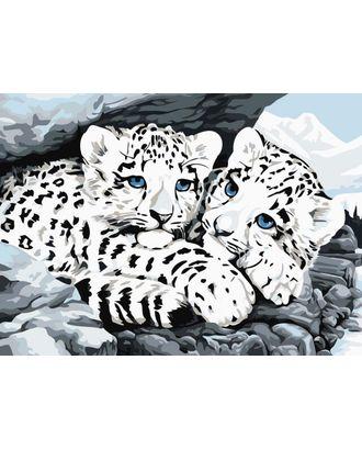 Алмазная вышивка Ягуарята LE051 30х40 тм Цветной арт. МГ-101401-1-МГ0901799
