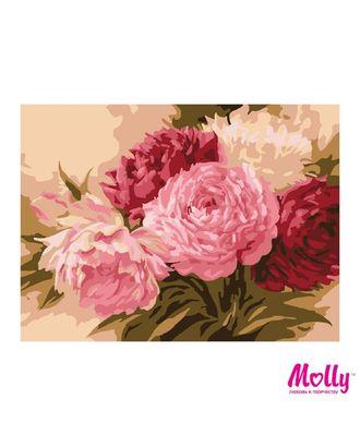 Картины по номерам Molly Оттенки розового (12 цветов) 15х20 см арт. МГ-96663-1-МГ0910173