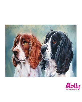 Картины по номерам Molly Два охотника (12 цветов) 15х20 см арт. МГ-96632-1-МГ0910176