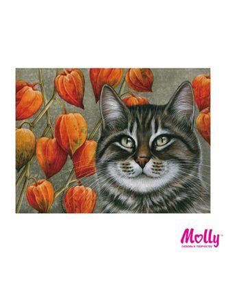 Картины по номерам Molly Мечтатель (12 цветов) 15х20 см арт. МГ-96660-1-МГ0910179
