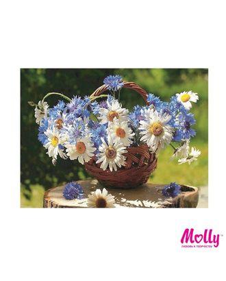 Картины по номерам Molly Корзина полевых цветов (15 цветов) 15х20 см арт. МГ-96655-1-МГ0910188
