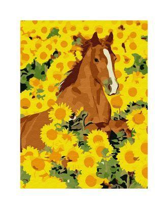 Картины по номерам Molly Лошадь в подсолнухах (13 цветов) 15х20 см арт. МГ-96674-1-МГ0910199