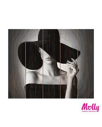 Картины по номерам на дереве Molly Дама в черном (17 Цветов) 40х50 см арт. МГ-97790-1-МГ0931695
